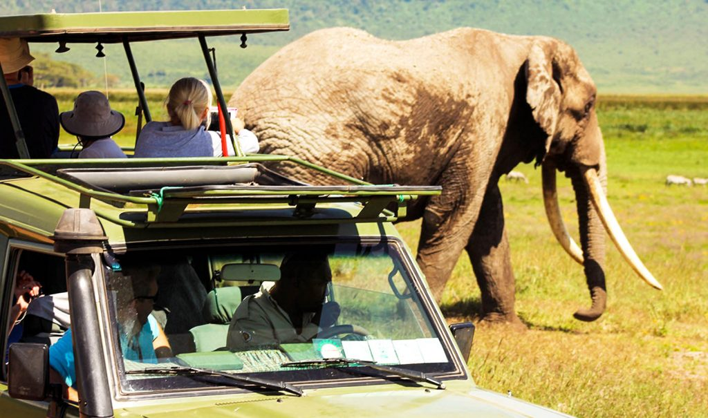 how much does a safari in africa cost
