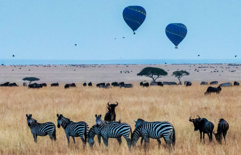 how much is a hot air balloon ride in serengeti